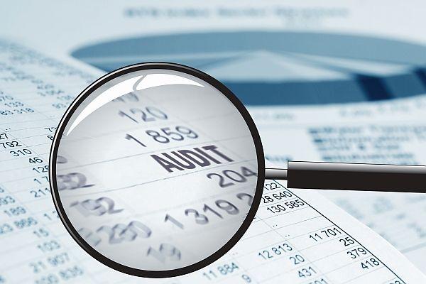 Palisade Oracle licence audit