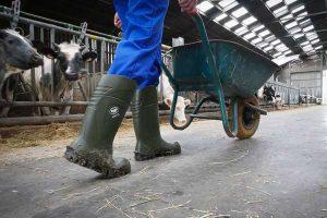 Health and Safety on farm app