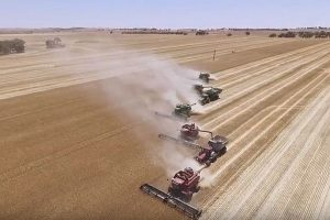 GRDC AgriTech GrainInnovate fund